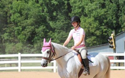Shining Hope Farms hosts annual Special Olympics Equestrian Show