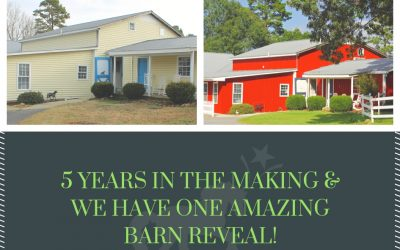 Mt. Holly Farm Indoor Arena and Barn Makeover Reveal