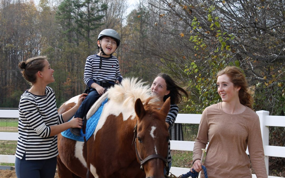 Shining Hope Farms to offer AHA Level I Hippotherapy Treatment Principles Course